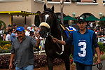 DEL MAR, CA  SEPTEMBER 1: #3 Nolde, ridden by Victor Espinoza, in the paddock of the Del Mar Derby (Grade ll) on September 1, 2019 at Del Mar Thoroughbred Club in Del Mar, CA. ( Photo by Casey Phillips/Eclipse Sportswire/CSM)