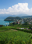 CHE, Schweiz, Kanton Bern, Berner Oberland, Spiez: mit Schloss Spiez und Schlosskirche am Thunersee, Raddampfer Bluemlisalp | CHE, Switzerland, Bern Canton, Bernese Oberland, Spiez: castle Spiez with castle church at Lake Thun, paddle steamer Bluemlisalp