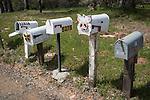Mailbox row along a country road, Mariposa County, Calif.