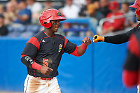 Batavia Muckdogs second baseman Samuel Castro (5) fist bumps Rony Cabrera (right) after scoring a run during a game against the Auburn Doubledays on June 19, 2017 at Dwyer Stadium in Batavia, New York.  Batavia defeated Auburn 8-2 in both teams opening game of the season.  (Mike Janes/Four Seam Images)
