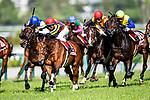 TAKARAZUKA,JAPAN-APR 25: Cadence Call #5,ridden by Yoshihiro Furukawa,wins the Milers Cup at Hanshin Racecourse on April 25,2021 in Takarazuka,Hyogo,Japan. Kaz Ishida/Eclipse Sportswire/CSM