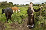 Maureen Breen  returning her cows to pasture near her home at Benvoran, Kilmurry Mc Mahon. Photograph by John Kelly.
