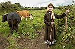 Maureen Breen  returning her cows to pasture near her home at Benvoran, Kilmurry Mc Mahon. Photograph by John Kelly.