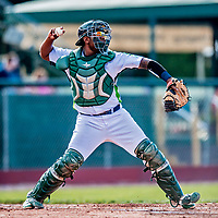 29 July 2018: Vermont Lake Monsters catcher Robert Mullen in action against the Batavia Muckdogs at Historic Centennial Field in Burlington, Vermont. Mullen hit his first home run of the season: a game-winning 3-run dinger in the bottom of the 4th inning, as the Lake Monsters defeated the Muckdogs 4-1 in NY Penn League action. Mandatory Credit: Ed Wolfstein Photo *** RAW (NEF) Image File Available ***