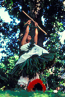 Woman wearing ti leaf adornments and dancing a kahiko hula that includes kalaau (sticks).  Uliuli (feather rattles) are at her feet