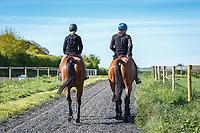 YARD VISIT: GALLOPS WITH: Sir Mark Todd (LEONIDAS II); Megan Heath (ST DANIEL)  THE LEAD UP TO 2014 GBR-Mitsubishi Motors Badminton CCI4* (Saturday 3 May) CREDIT: Libby Law COPYRIGHT: LIBBY LAW PHOTOGRAPHY - NZL