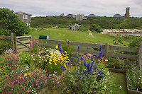 Cella Thaxter's recreated garden on Appledore Island, Isles of Shoals. Photograph by Peter E. Randall