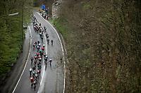 peloton climbing. <br /> <br /> 3th Liège-Bastogne-Liège-Femmes 2019 (1.WWT)<br /> 1 Day Race: Bastogne – Liège 138,5km<br /> <br /> ©kramon