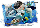 Howard, SELFIES, paintings+++++,GBHRPROV239,#selfies#, EVERYDAY ,maritime,sharks,dolphins ,puzzle,puzzles