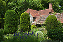 Clipped yew columns and The Barn in the Old Garden, Vann House, Surrey, mid June.