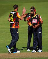 141123 T20 Cricket - Firebirds v Stags