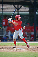 Philadelphia Phillies Nate Fassnacht (11) at bat during an Instructional League game against the Toronto Blue Jays on September 27, 2019 at Englebert Complex in Dunedin, Florida.  (Mike Janes/Four Seam Images)