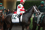 We Miss Artie and John Velazquez in the Dixiana Breeders' Futurity Grade 1 $400,000 at Keeneland Race Course.   October 05, 2013.