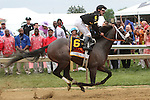 Oxbow with Gary Stevens win the 138th  running of the Grade I Preakness Stakes for 3-year olds, going 1 3/16 mile, at Pimlico Race Course.  Trainer D. Wayne Lukas.  Owners Calumet Farms