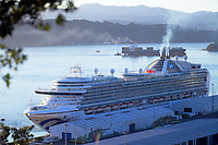 The Ruby Princess cruise ship arrives at CentrePort in Wellington, New Zealand on Saturday, 14 March 2020. It was Wellington's 111th cruise ship of the season. Photo: Dave Lintott / lintottphoto.co.nz