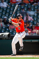 Sam Houston State Bearkats third baseman Carter Burgess #8 at bat during the NCAA baseball game against the Texas Tech Red Raiders on March 1, 2014 during the Houston College Classic at Minute Maid Park in Houston, Texas. The Bearkats defeated the Red Raiders 10-6. (Andrew Woolley/Four Seam Images)