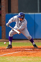 Devin Bujnovsky (6) of the High Point Panthers lays down a bunt against the Presbyterian Blue Hose at the Presbyterian College Baseball Complex on March 3, 2013 in Clinton, South Carolina.  The Blue Hose defeated the Panthers 4-1.  (Brian Westerholt/Four Seam Images)