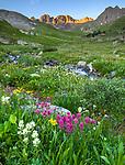 San Juan Mountains, CO<br /> Morning light on American Basin with wildflower meadows beneath Handies Peak