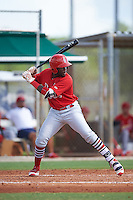 GCL Cardinals right fielder Sanel Rosendo (48) at bat during the first game of a doubleheader against the GCL Marlins on August 13, 2016 at Roger Dean Complex in Jupiter, Florida.  GCL Cardinals defeated GCL Marlins 4-2 in a continuation of a game originally started on August 8th.  (Mike Janes/Four Seam Images)