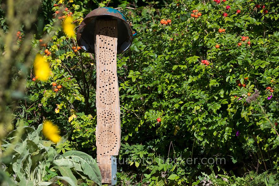 """Wildbienen-Nisthilfe aus einem Eichenstamm, Eichenspaltpfahl, Hartholz, wurden mit unterschiedlich dicken Bohrungen versehen, eine alte Schale als """"Hut"""", um einen Regenschutz von oben zu gewähren. Wildbienen-Nisthilfen, Wildbienen-Nisthilfe selbermachen, selber machen, Wildbienenhotel, Insektenhotel, Wildbienen-Hotel, Insekten-Hotel"""