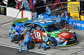 #18: Kyle Busch, Joe Gibbs Racing, Toyota Camry M&M's Hazelnut