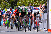 The race finish. Stage Two - Hydro Heat (Cambridge -Roto o rangi - Pukeatea). 2019 Grassroots Trust NZ Cycle Classic UCI 2.2 Tour from St Peter's School in Cambridge, New Zealand on Thursday, 24 January 2019. Photo: Dave Lintott / lintottphoto.co.nz
