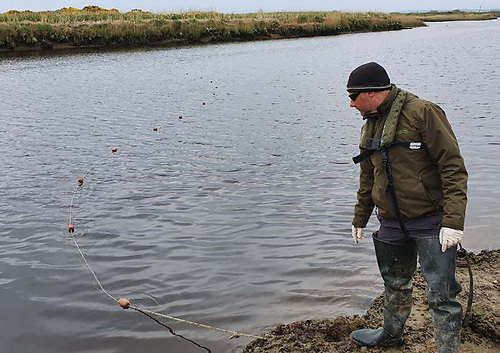 IFI staff member John O'Connor in Co Kerry seizing an illegal fishing net from the River Feale in 2020