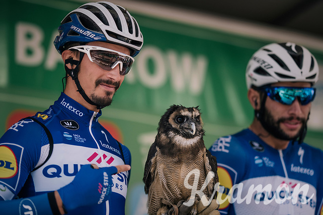 falconer Julian Alaphilippe (FRA/Quick-Step Floors) at the pre race team presentation<br /> <br /> Stage 6: Barrow-in-Furness to Whinlatter Pass   (168km)<br /> 15th Ovo Energy Tour of Britain 2018
