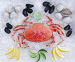 WHOLE CRAB, MUSSELS & CLAMS with lemon and lime slices on ice.