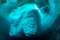 iceberg, Tasiilaq, Greenland, North Atlantic Ocean