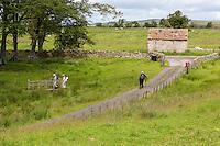 Cumbria, England, UK.  Hikers on the Hadrian's Wall Footpath, near Birdoswald Fort.