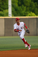 Greeneville Reds infielder Miguel Hernandez (33) in the field during a game against the Bristol Pirates at Pioneer Field on June 19, 2018 in Greeneville, Tennessee. Bristol defeated Greeneville 10-2. (Robert Gurganus/Four Seam Images)