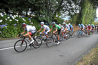 Riders climb Limeworks Hill during the NZ Cycle Classic stage two of the UCI Oceania Tour in Wairarapa, New Zealand on Monday, 23 January 2017. Photo: Dave Lintott / lintottphoto.co.nz