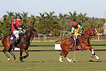WELLINGTON, FL - NOVEMBER 25:  Gustavo Toledo of Team Brazil (yellow) hits a backshot as Julio Arellano of Team USA (Red) looks on,  as Team USA defeats Team Brazil, 9 - 7 in the USPA International Cup final, at the Grand Champions Polo Club, on November 25, 2017 in Wellington, Florida. (Photo by Liz Lamont/Eclipse Sportswire/Getty Images)