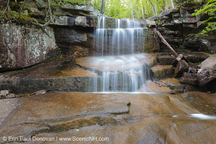 Champney Falls on Champney Brook next to Champney Falls Trail in Albany, New Hampshire USA during the spring months.