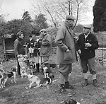The Dummer Beagles.A lawn meet at Manor Farm, Icomb, Gloucestershire. Its a very social occasion with the host providing ample refreshment.