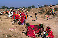 "Südasien Asien Indien IND Rajasthan .Dorfbewohner bauen an einem Bewaesserungskanal  -  Klima Klimawandel Duerre Frau Frauen Wasser Wassermangel Not Landwirtschaft Wueste xagndaz | .South Asia India Rajasthan .villager build a canal for irrigation -  agriculture climate change women water drought sand desert sari construction.| [ copyright (c) Joerg Boethling / agenda , Veroeffentlichung nur gegen Honorar und Belegexemplar an / publication only with royalties and copy to:  agenda PG   Rothestr. 66   Germany D-22765 Hamburg   ph. ++49 40 391 907 14   e-mail: boethling@agenda-fototext.de   www.agenda-fototext.de   Bank: Hamburger Sparkasse  BLZ 200 505 50  Kto. 1281 120 178   IBAN: DE96 2005 0550 1281 1201 78   BIC: ""HASPDEHH"" ,  WEITERE MOTIVE ZU DIESEM THEMA SIND VORHANDEN!! MORE PICTURES ON THIS SUBJECT AVAILABLE!! INDIA PHOTO ARCHIVE: http://www.visualindia.net ] [#0,26,121#]"
