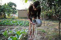 Bangladesh, Region Madhupur, Garo Jugendlicher bewaessert Gemuesegarten , Garos sind eine christliche u. ethnische Minderheit  / BANGLADESH Madhupur, Garo boy irrigate vegetables in garden, Garos is a ethnic group and mostly christians