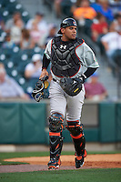 Norfolk Tides catcher Francisco Pena (29) during a game against the Buffalo Bisons on July 18, 2016 at Coca-Cola Field in Buffalo, New York.  Norfolk defeated Buffalo 11-8.  (Mike Janes/Four Seam Images)