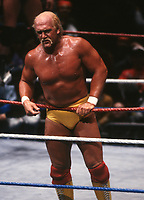 Hulk Hogan  1987<br /> Photo By John Barrett/PHOTOlink