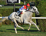 White Rose (no. 2), ridden by Shaun Bridgmohan and trained by William Mott, wins the 20th running of the grade 3 Glens Falls Stakes for fillies and mares three years old and upward on September 5, 2015 at Saratoga Race Course in Saratoga Springs, New York. (Bob Mayberger/Eclipse Sportswire)