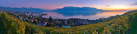 Sunset on Lake Léman in a vineyard above Vevey/Switzerland with a view on the Rhone Valley