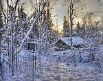 Small log cabin in snow on Joliffe Island.