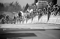Alejandro Valverde (ESP/Movistar) is yet again King of the Mur de Huy as he outsprints Julian Alaphilippe (FRA/Etixx-QuickStep) & Michael Albasini (SUI/Orica-GreenEDGE).<br /> He crosses the finish line victoriously here for the 3rd time in his career.<br /> <br /> 79th Flèche Wallonne 2015