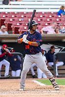 Bowling Green Hot Rods catcher Ronaldo Hernandez (24) at bat during a Midwest League game against the Wisconsin Timber Rattlers on July 23, 2018 at Fox Cities Stadium in Appleton, Wisconsin. Wisconsin defeated Bowling Green 5-3. (Brad Krause/Four Seam Images)