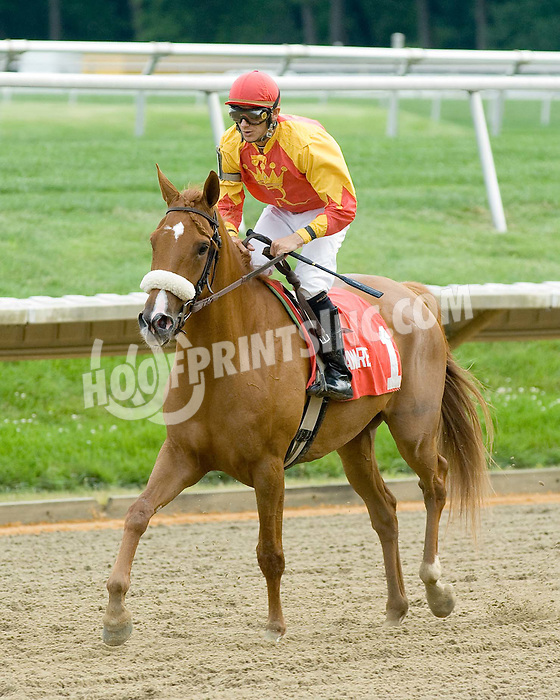 Sand Witchh winning The Betsy Ross Arabian Distaff at Delaware Park on 7/4/09