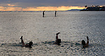 Water ocean exercise at Magic Island on the island of Ohau in Honolulu, Hawaii.