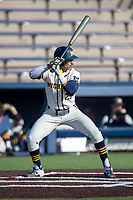 Michigan Wolverines outfielder Tito Flores (22) at bat during the NCAA baseball game against the Illinois Fighting Illini at Fisher Stadium on March 19, 2021 in Ann Arbor, Michigan. Illinois won the game 7-4. (Andrew Woolley/Four Seam Images)