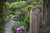 Entry into Sally Robertson's California cottage garden