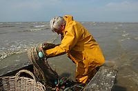 North Sea shrimp harvest, Oostduinkerke, Belgium, July 2005. (photo by Pico van Houtryve)